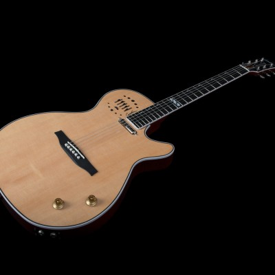 GODIN 047895 - Multiac Steel Natural HG with TRIC (Made in Canada) - Электроакустическая гитара